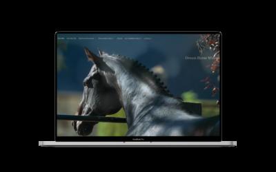 Création du site internet de Dream Horse Winner